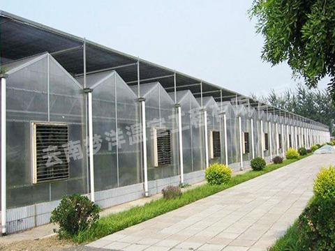 云南温室大棚:连栋温室大棚设计及建筑注意事项
