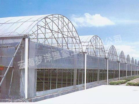 云南玉溪温室大棚建造双连栋大棚时需要注意哪些问题?
