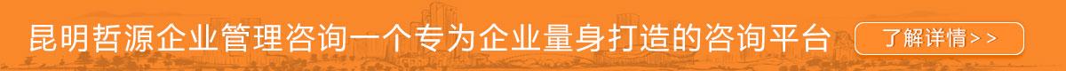 昆明企业管理咨询服务机构