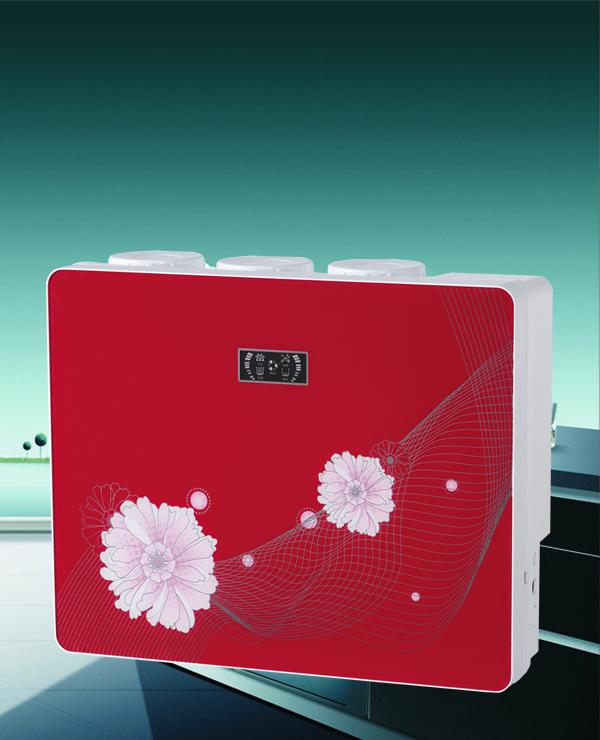 中国红横版豪华箱式纯水机