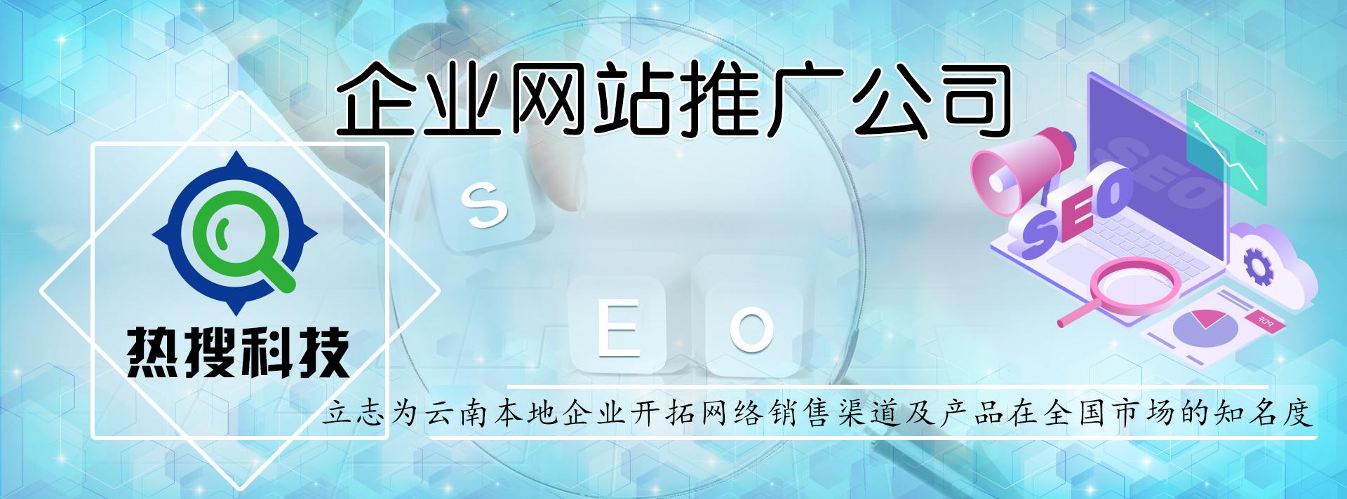 企业网站推广公司