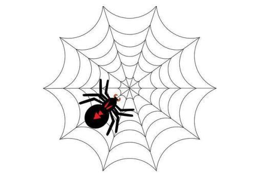 如何吸引蜘蛛来抓取页面?昆明网络推广人员提示注意这3个方面