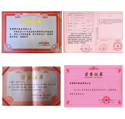 昆明祥和陵园荣誉资质证书