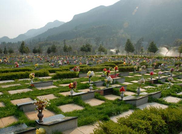 购买陵园墓地需要带哪些凭证和资料