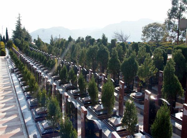 墓地风水对后代运势有什么影响