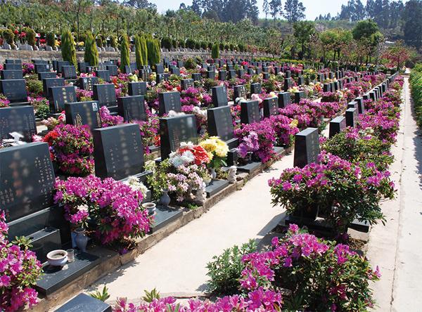 金陵陵园墓区