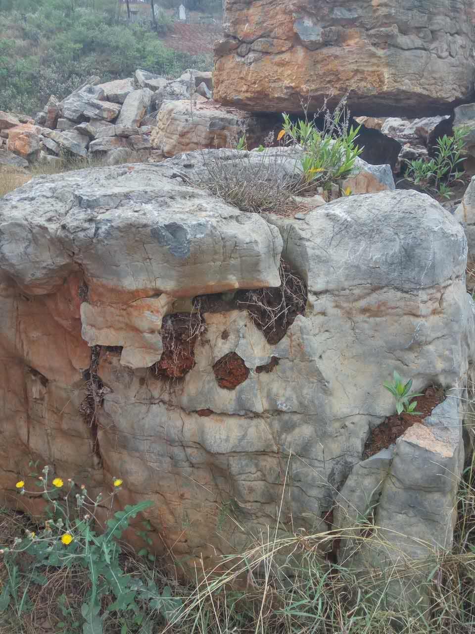 云南风景石