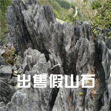假山石-2