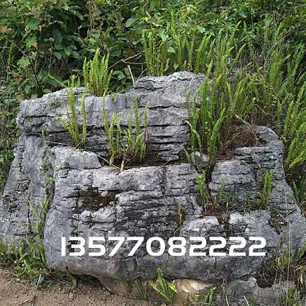 景观石-23