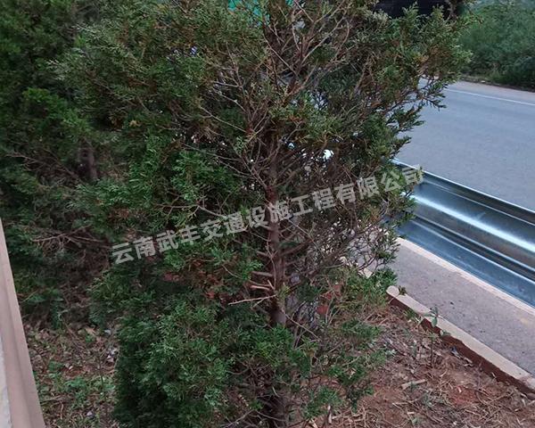 波形高速公路防护栏工程施工