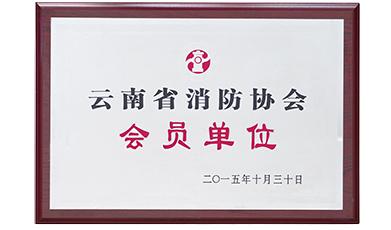 消防协会单位证书
