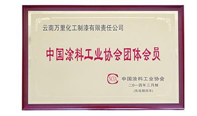 涂料工业协会证书
