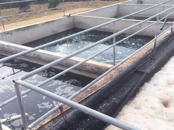 养殖污水处理设备厂家