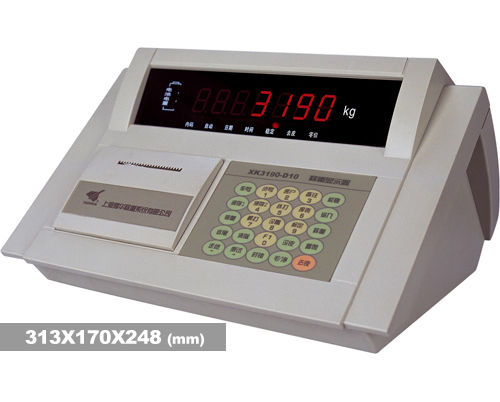 称重仪表X3190-D10