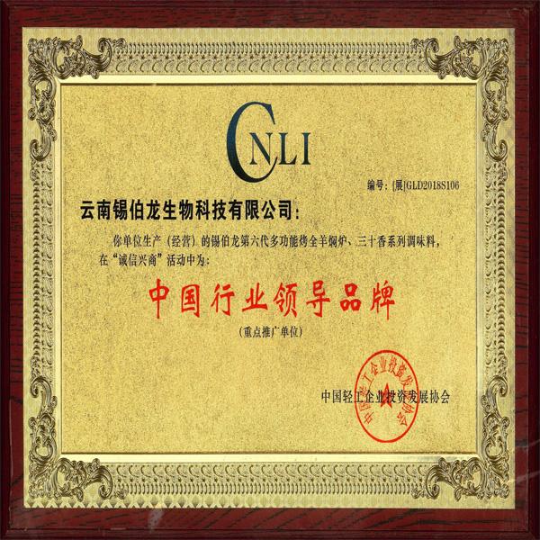 中国行业领导品牌证书
