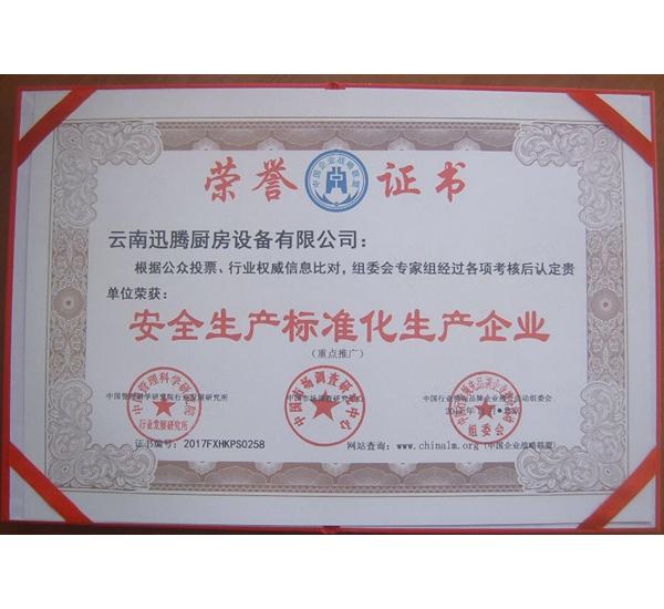 安全生产标准化生产企业证书