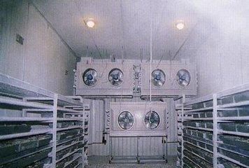 速冻冷库与速冻隧道的区别有哪些?