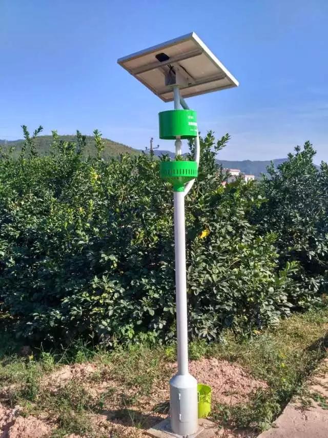 昆明风吸式太阳能杀虫灯厂家