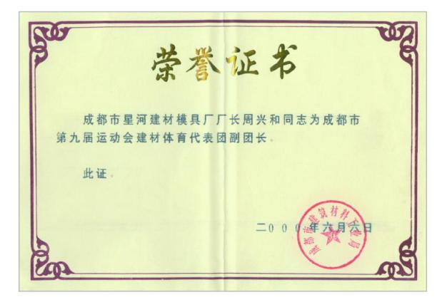 周兴和体育代表团副团长证书