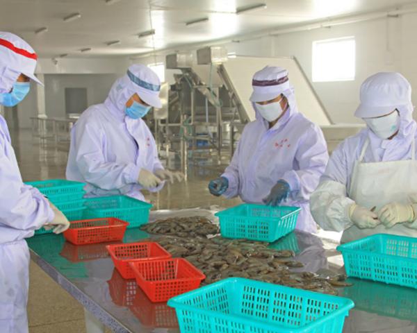 食品类洁净工程中的四大除菌技术性,非专业人员小心操作!