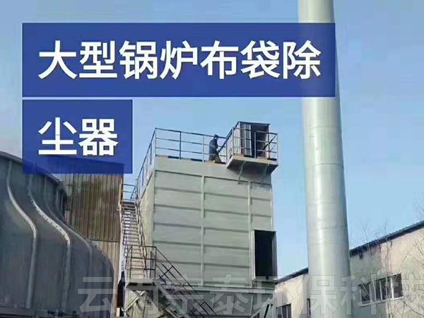 昆明大型锅炉布袋除尘器厂家