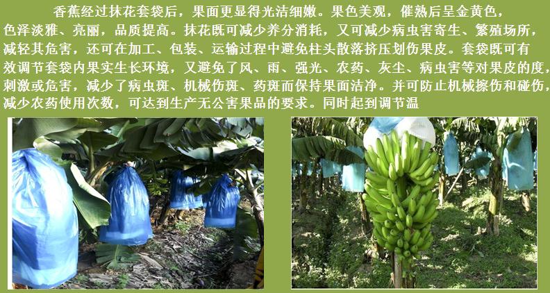 香蕉万博体育手机版客户端防寒袋的好处