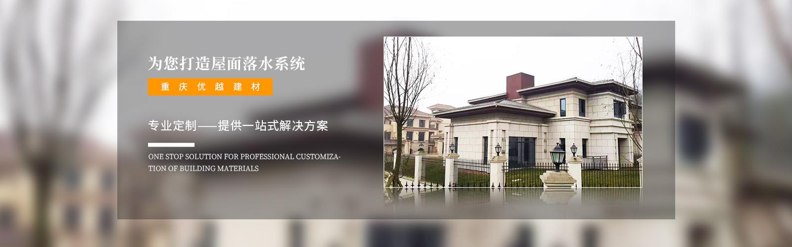 重庆屋面落水系统