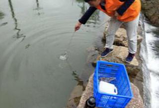 黔东南州岑巩县乡镇饮用水源地水质监测