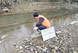 偏坡至小河口 沙田小溪水质检测