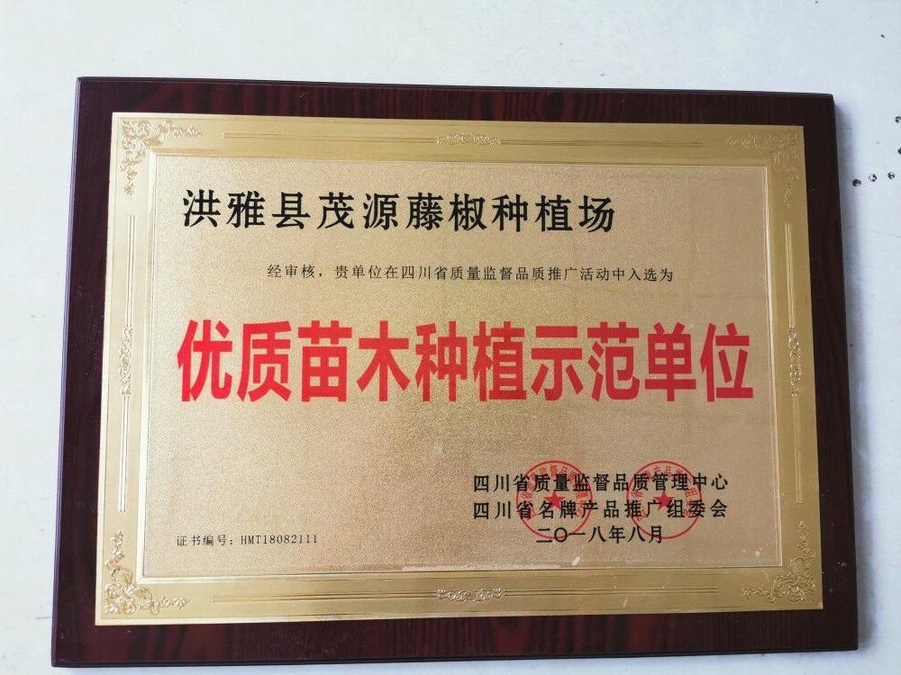 藤椒种植荣誉