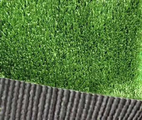 贵州仿真地毯草