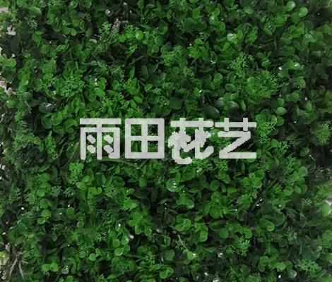 贵州人造草坪公司