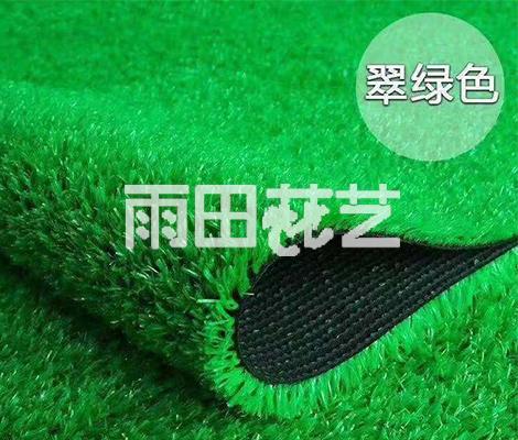 仿真地毯草