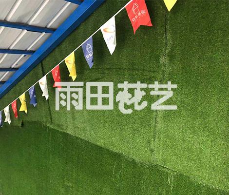人造地毯草