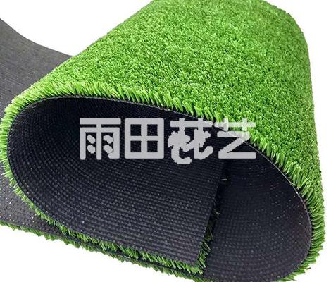 地毯草批发价格
