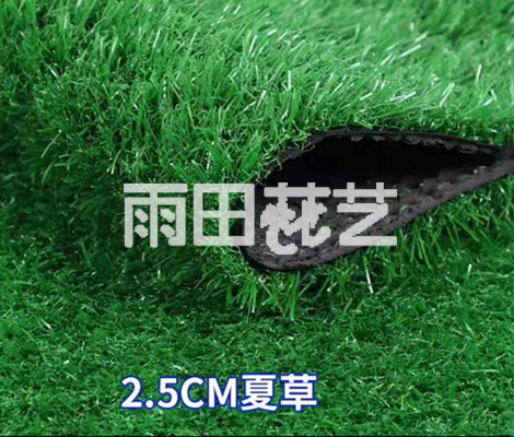 贵阳地毯草批发