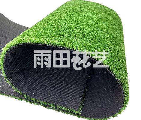 贵阳仿真地毯草