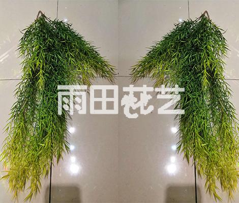 仿真植物挂壁