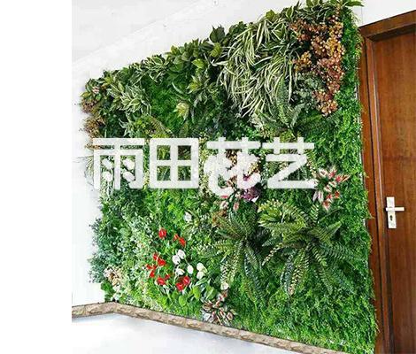 贵州植物墙定制