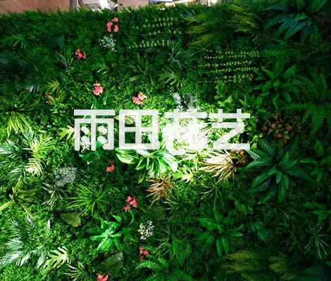 贵州仿真植物墙价格