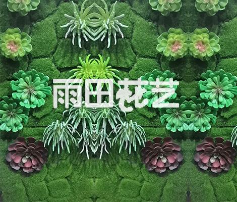 贵阳仿真植物背景墙