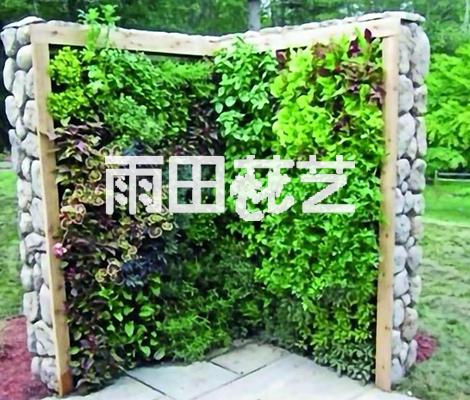 贵阳植物墙定制