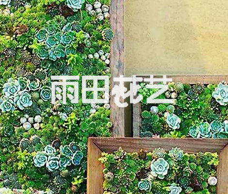 贵阳仿真植物背景墙厂家