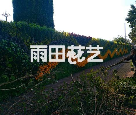 贵州仿真植物厂家