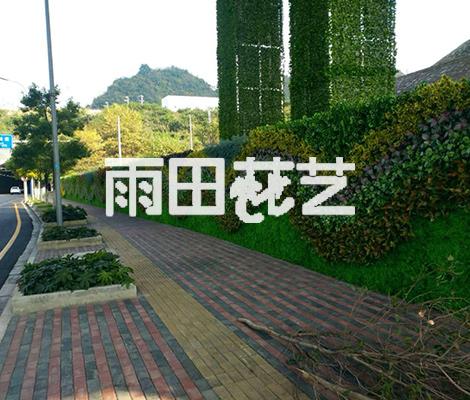贵州仿真植物厂