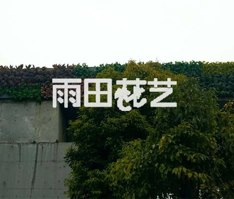 贵州植物背景墙价格