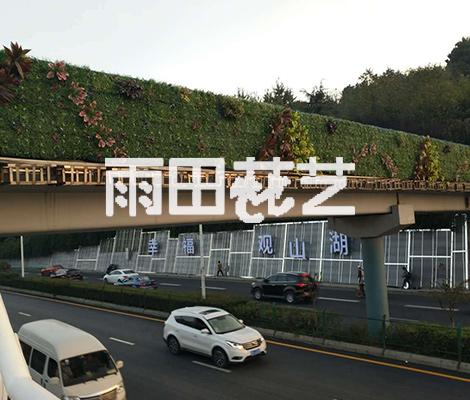 贵州植物背景墙价格多少钱