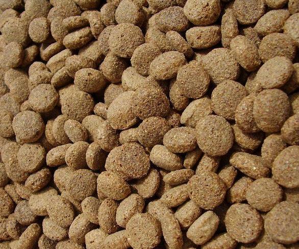 天津最好的微生物饲料添加剂厂家介绍微生态制剂的组成