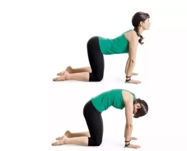 瑜伽初学者怎么去练习后弯体式