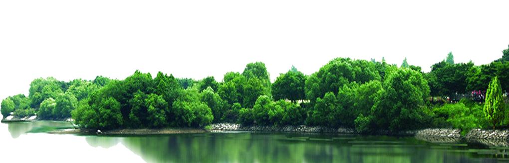 沈阳绿植景观设计公司